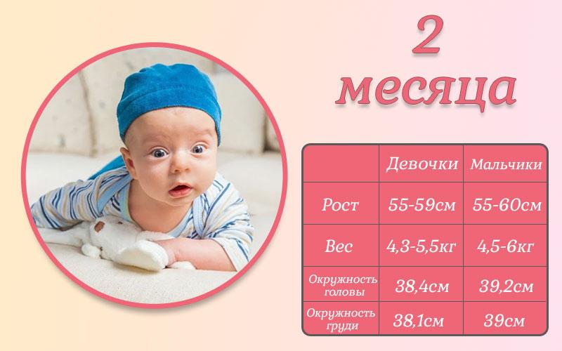 Развитие ребенка в 2 месяца. Режим дня и гигиена малыша.
