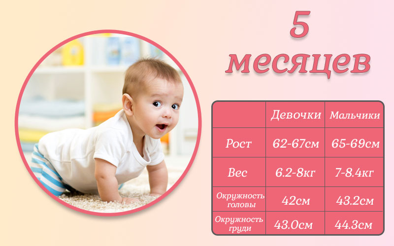 Развитие ребенка в 5 месяцев - учимся ползать