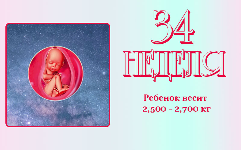 Развитие плода на з4 неделе беременности