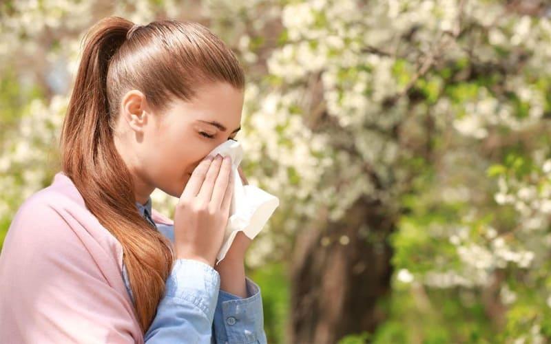 Факторы влияющие на развитие аллергии при беременности