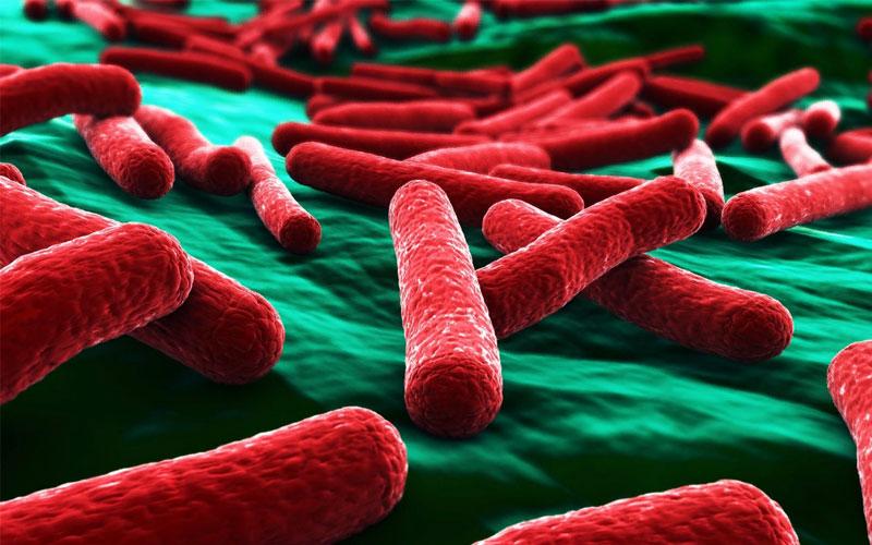 Бактериальный стоматит у детей