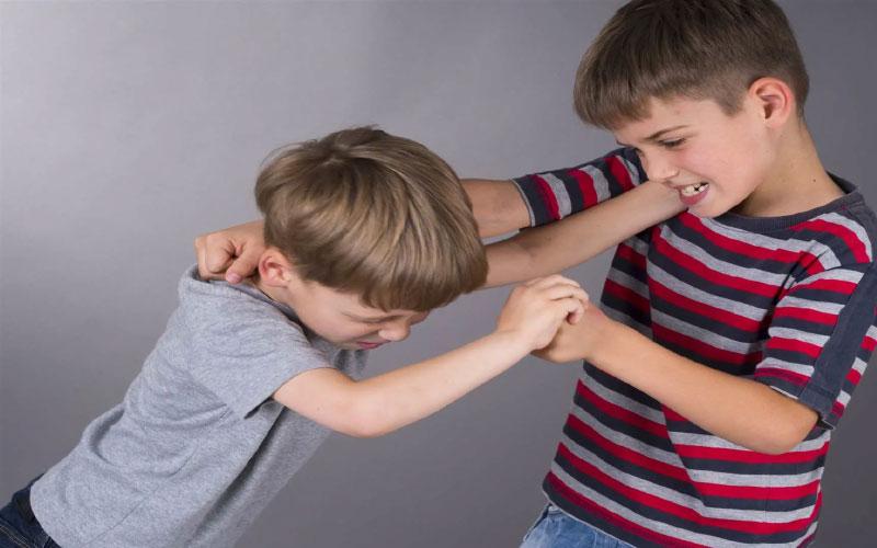 Как поступать если старший ребенок ревнует к младшему?