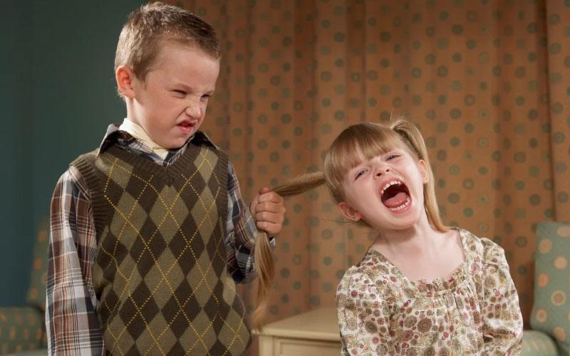 Соперничество у детей в семье – причины