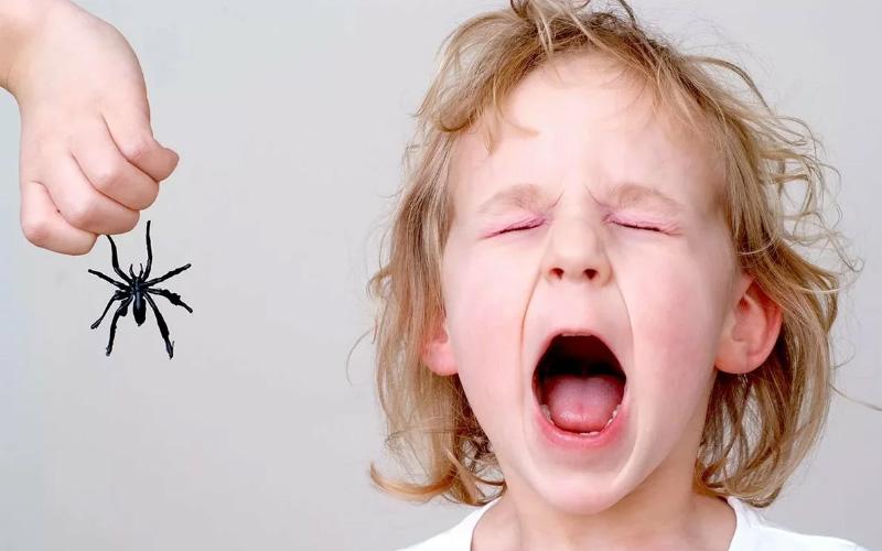 у ребенка много фобий