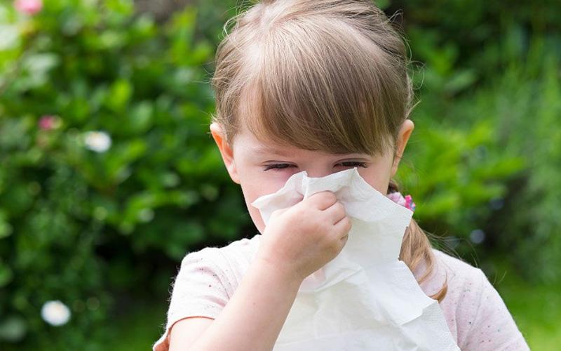 Отличительные особенности аллергии на пыльцу