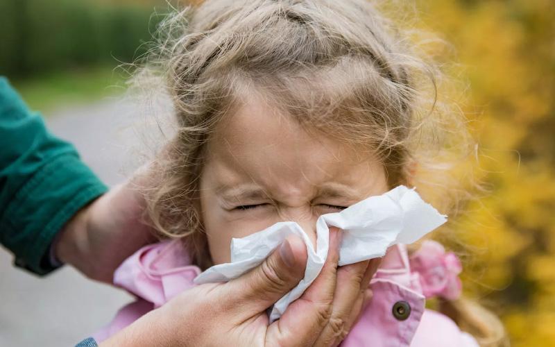 Типы пыльцы, повышающей чувствительность людей