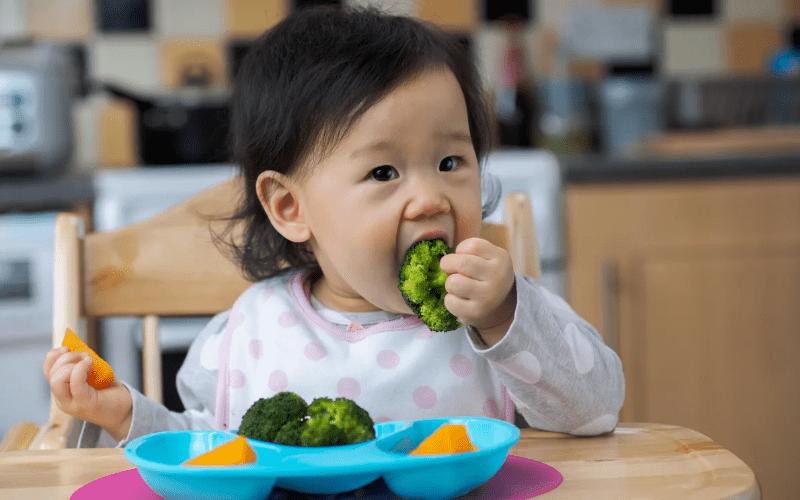 Вегетарианство для детей - 6-7 месяцев и первые приемы пищи