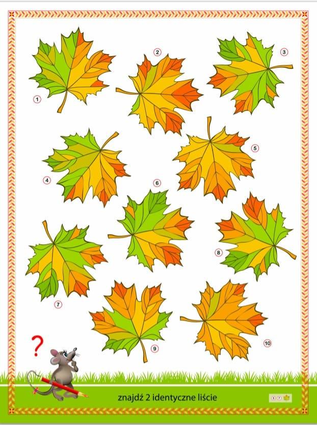2. Математические Головоломки для детей - найди одинаковый листок.