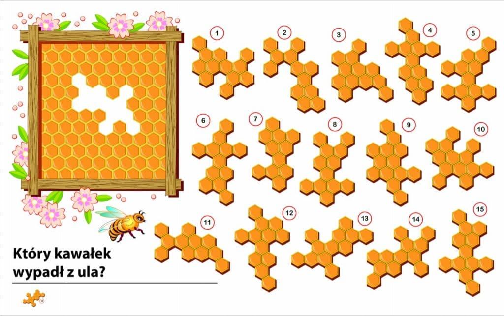 3. Логическая головоломка для детей: какая деталь выпала из улья?